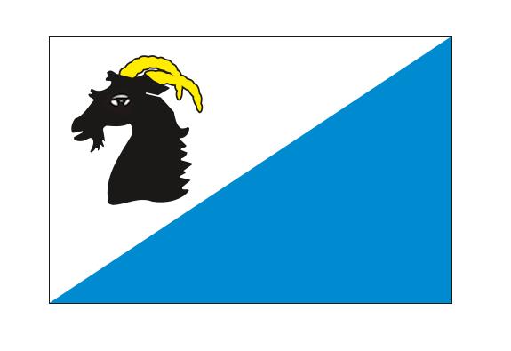 flaga.png